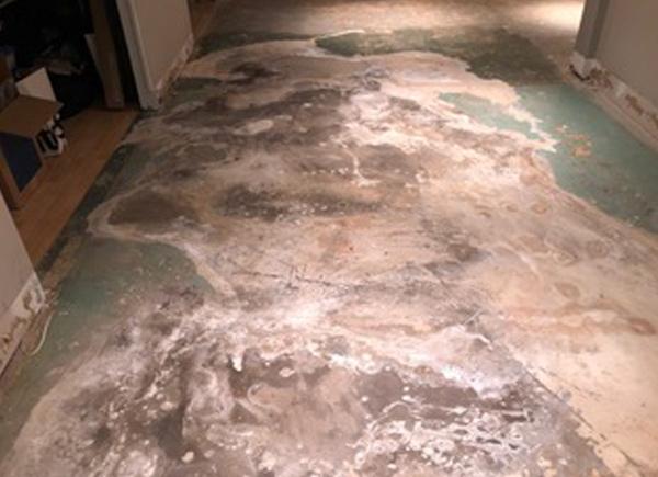 Concrete Floor Before